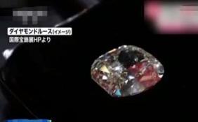 50克拉钻石丢失价值约1300万元 这案件该怎么定罪?