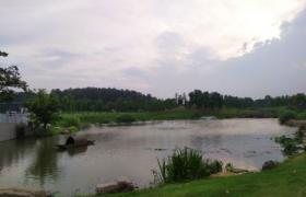 提高儿童生态环境保护意识 实施农村供水保障工程